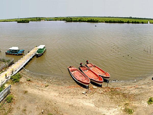 Cuddalore photos, Pichavaram Mangrove Forest - A Panorama view