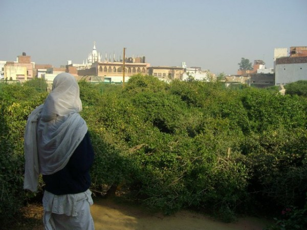 Vrindavan photos, Seva Kunj and Nidhuban - A view