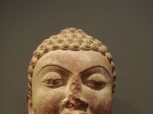 Mathura photos, Mathura Museum - Head of Buddha