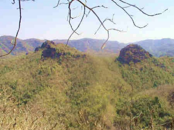 Pachmarhi photos, Satpura National park -  A view of the Park