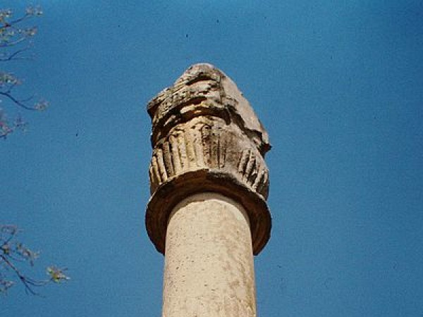 Vidisha photos, Khamba Baba (Heliodorus pillar) - A close view