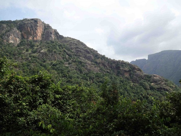 Kolli Hills photos - View of nature