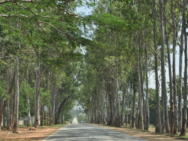 Nandi Hills photos, Escape to Nature