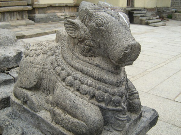 Talakadu photos, Nandi Sculpture
