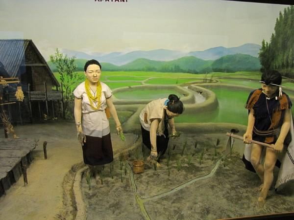 Itanagar photos, Jawaharlal Nehru Museum - Apatani diorama