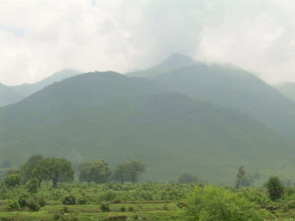 Giridih photos, Parasnath Hill - Greenery around Parasnath