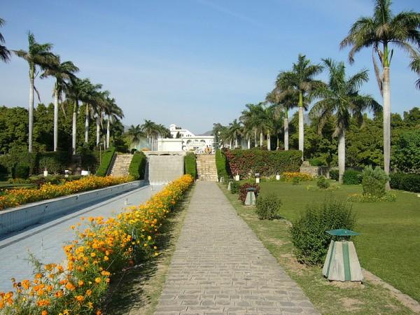 Panchkula photos, Yadavindra Garden Pinjore - Flowers