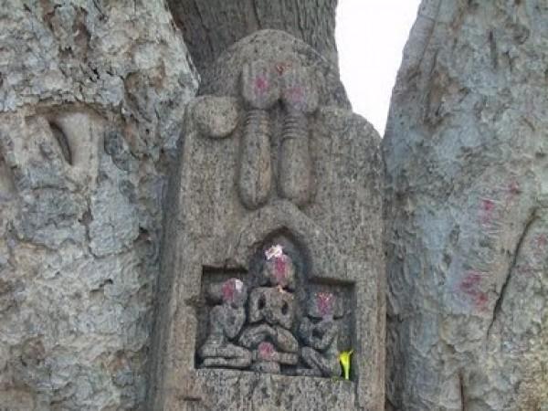 Dharamgarh photos, Junagarh - Carvings of deities