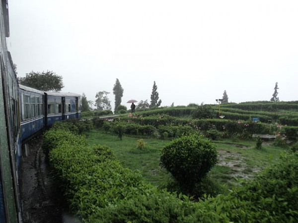Darjeeling photos, Darjeeling Himalayan Railway - A breathtaking view From a Moving Train at the Darjeeling Himalayan