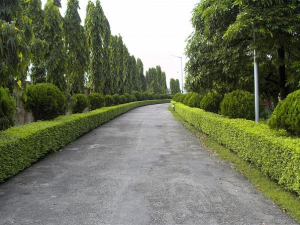 Siliguri photos, Science City - The Path