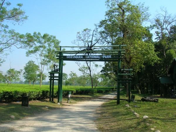 Chalsa photos, Gorumara National Park - The Entrance of the Gorumara National Park
