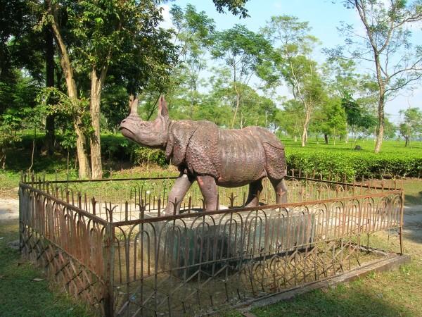 Chalsa photos, Gorumara National Park - The Rhino Statue in the park