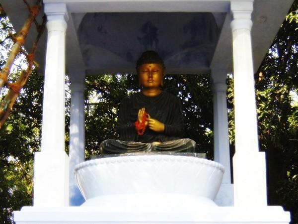 Rajgir photos, Venu Vana - Buddha Image