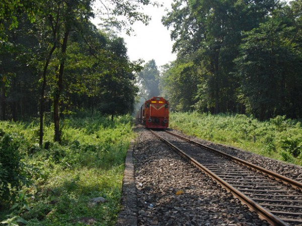 Jalpaiguri photos, The Train