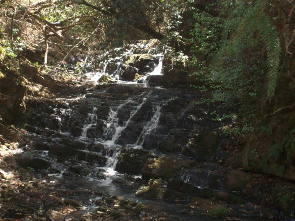 Shillong photos, Elephant Falls - A beautiful Falls