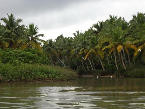 Alleppey photos, Backwaters