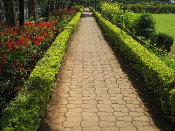 Coorg photos, Raja's seat - Flower Beds