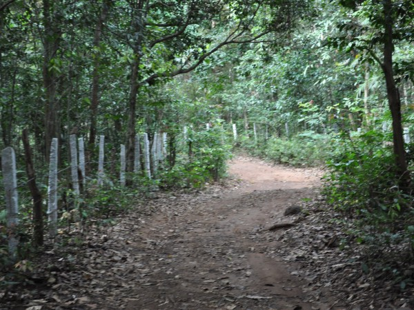 Agumbe photos, Jogigundi Falls - A Brisk Walk