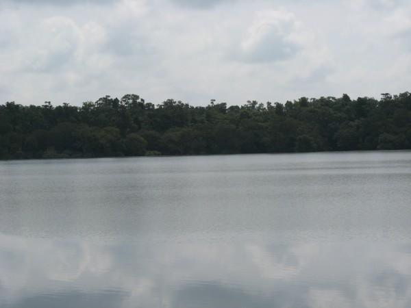 Yellapur photos, Kavadikeri - Stretch Beyond