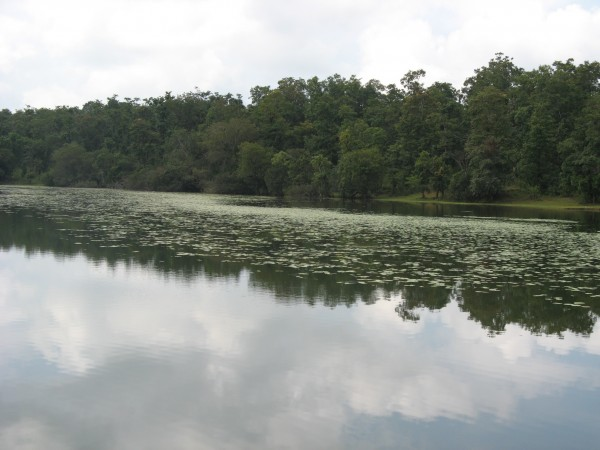 Yellapur photos, Kavadikeri - All Green