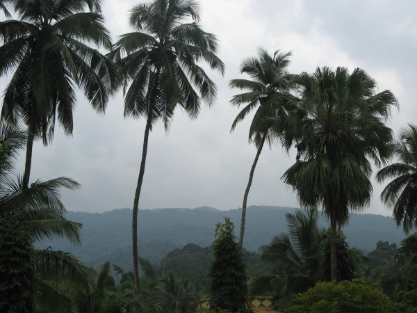 Kukke Subramanya photos, Subrahmanya Temple - Stand Still