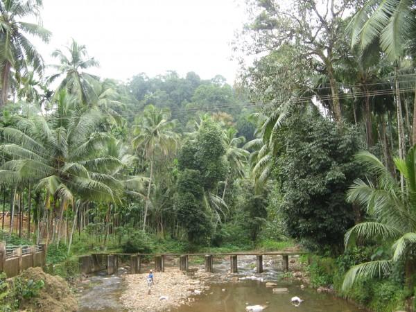 Kukke Subramanya photos, Subrahmanya Temple - Temple Calls!