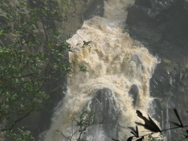 Yellapur photos, Magod Falls - Marshy Edge