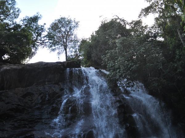 Sringeri photos, Sirimane Falls - DSC_0337