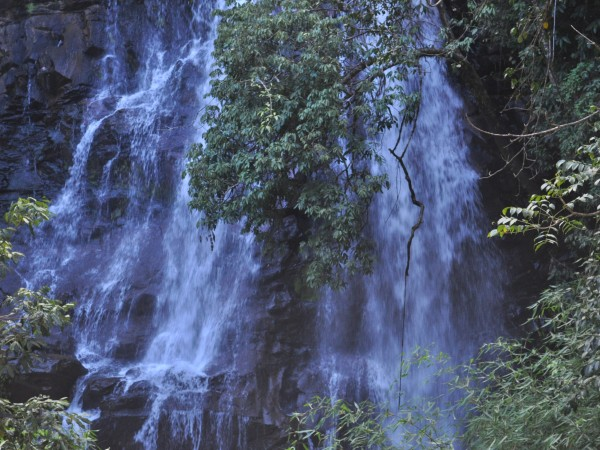 Sringeri photos, Sirimane Falls - DSC_0318