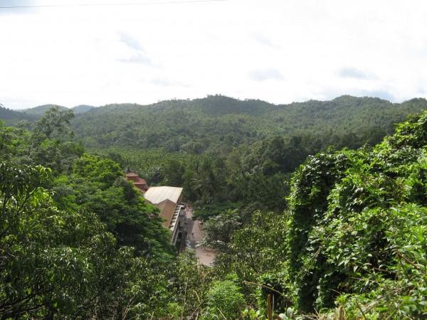 Honnemardu photos, Varadapura - IMG_4753