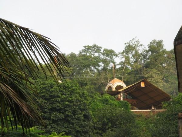 Honnemardu photos, Varadapura - IMG_4745