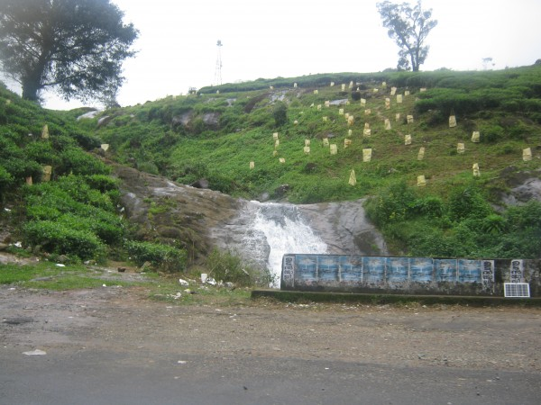 Vagamon photos, IMG_3668