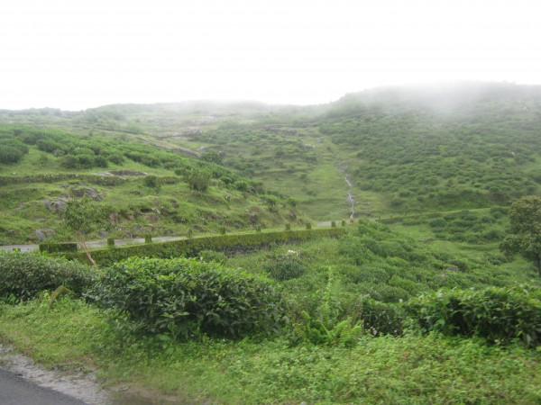 Vagamon photos, IMG_3562