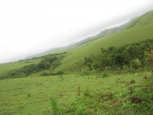 Vagamon photos, IMG_3501