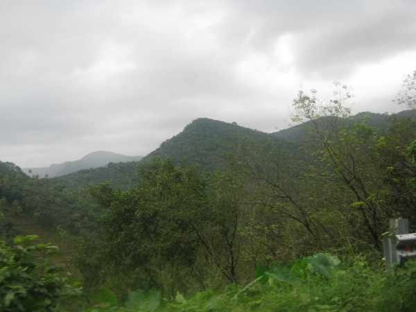 Vagamon photos, IMG_3385