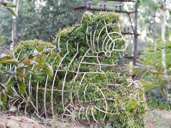 Nandi Hills photos, A figure of Nandi made of Iron frame