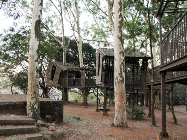 Nandi Hills photos, Bamboo Cottages amidst large eucalyptus trees