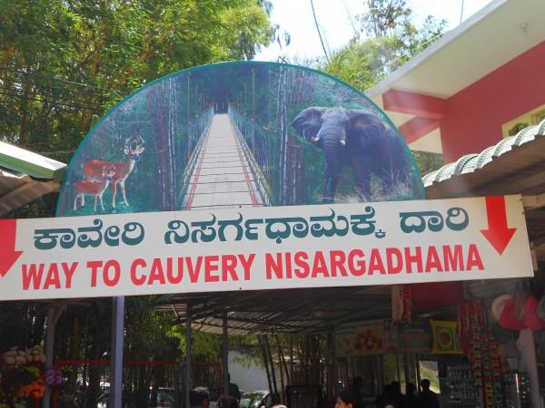 Coorg photos, Nisargadhama - DSCN1697