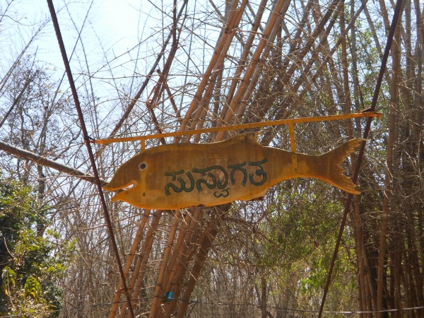 Coorg photos, Nisargadhama - DSCN1712