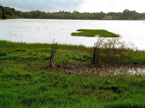 Mysore photos, Kukkarahalli Lake - lake