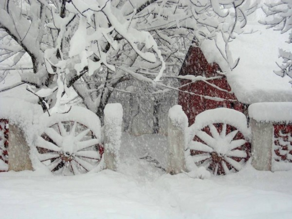 Srinagar photos, Wheels in snow