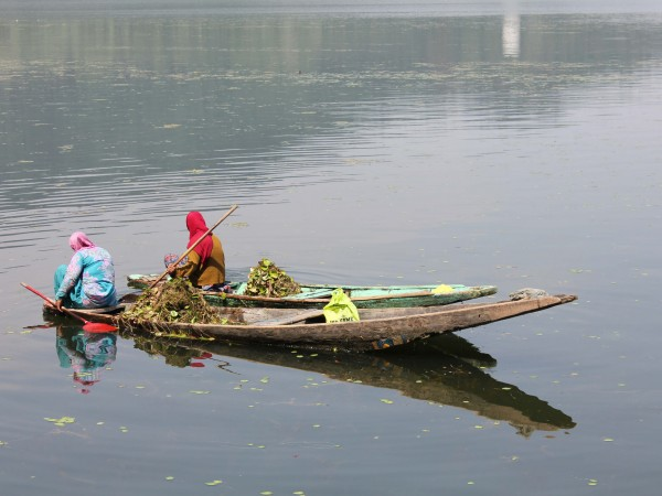 Srinagar photos, Dal Lake - Rowing Through the Lake