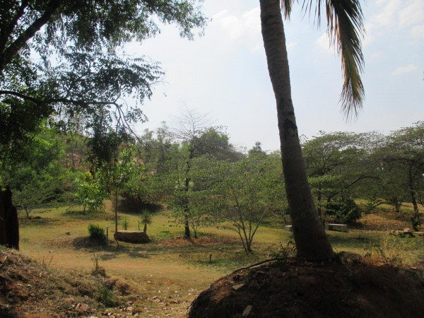 Bangalore photos, Pyramid valley - nsmail-6