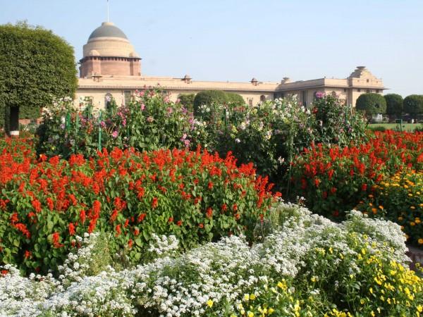 Delhi photos, Rashtrapati Bhavan - Rashtrapati Bhawan-4