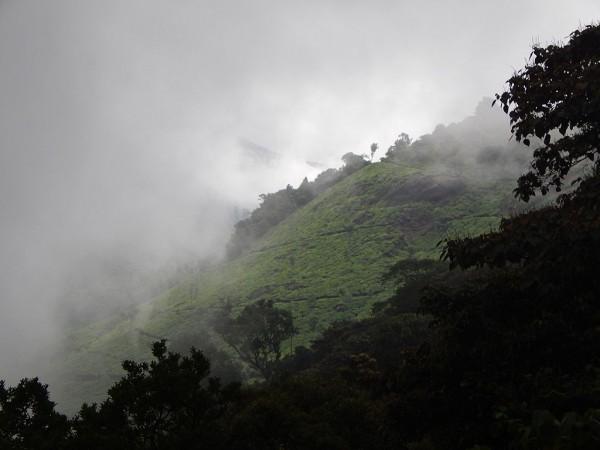 Munnar photos, Pothanmedu - Pothamedu_Viewpoint,_Munnar
