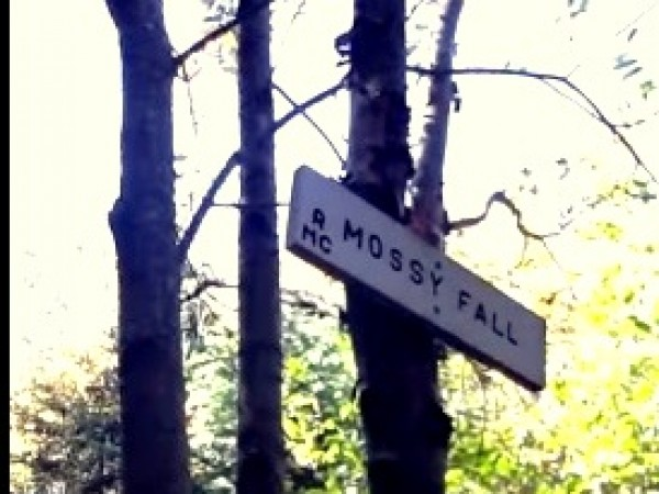 Mussoorie photos, Mossy Fall - MF