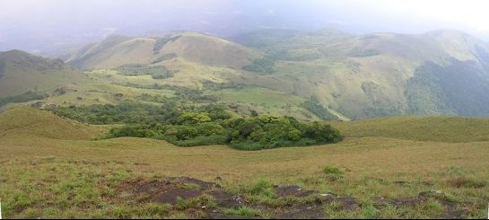 Tadiandamol photos, Tadiandamol Peak