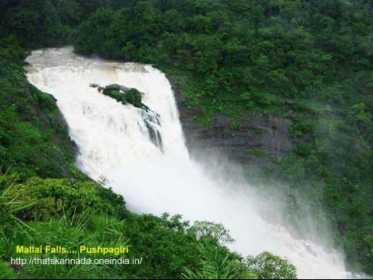 Coorg photos, Pushpagiri Wildlife Sanctuary - Milky Waterfall