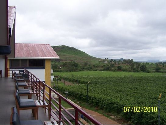 Nashik photos, Sula Vineyards