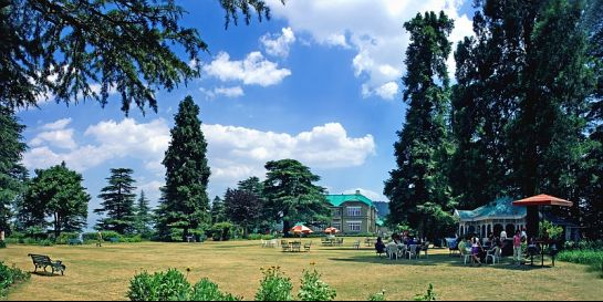 Chail photos, Chail Palace - Picturesque Surrounding
